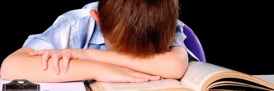 «Не хочу учиться!»